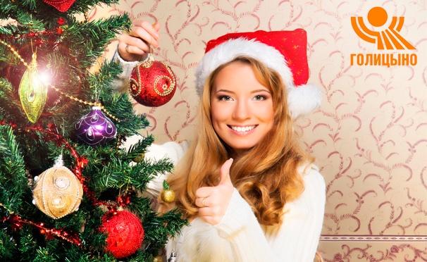 Скидка на Новый год в центре отдыха «Голицыно»: проживание в уютных номерах, праздничная шоу-программа, фейерверк, новогодний банкет, трехразовое питание, Wi-Fi и не только. Скидка до 23%